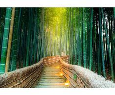 Fotomural Vinilo Pared Zen Bosque Bambú | Fotomurales | Fotomural Pared | Fotomural Decorativo | Vinilo Decorativo | Varias Medidas 200 x 150 cm | Decoración comedores, Salones | Diseño Elegante