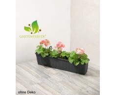 Jardinera para balcón de polyrattan incluye suspensión y sistema de riego, antracita, 80 x 19 x 18 cm