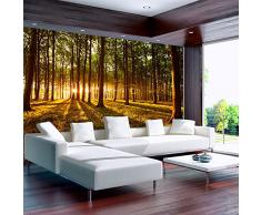 Fotomural 350x245 cm ! 3 tres colores a elegir - Papel tejido-no tejido. Fotomurales - Papel pintado 350x245 cm - bosque sol Árboles naturaleza paisajes c-B-0027-a-c
