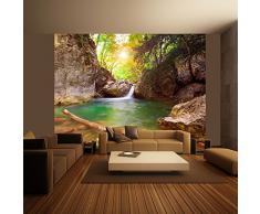 murando - Fotomural 300x231 cm - Papel tejido-no tejido - Papel pintado - naturaleza - 100403-153