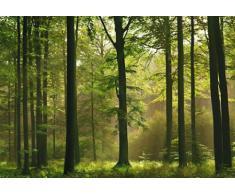1art1 40585 Wälder - Póster gigante en 8 partes (368 x 254 cm), diseño de bosque