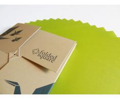 Conjunto de regalo de 100 hojas de papel para papiroflexia - Pantone Verde 390