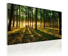 Cuadro en Lienzo 80x40 cm! 1 parte - Impresion en calidad fotografica - Cuadro en lienzo tejido-no tejido - Bosque Natura Paisaje c-B-0057-b-a 80x40 cm
