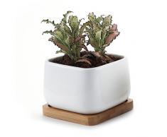 T4U Conjunto de 1 Ceramica Blanca Plaza NO.2 Cerámicos Planta Maceta Suculento Cactus Planta Maceta Planta Contenedor Vivero Maceta Macetas de jardín Macetas Envase