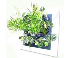 Cuadro/Marco Flowall para Kit de Pared Vegetal/Muro verde (Blanco)
