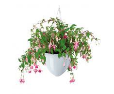 Scheurich 54346 0 - Maceta colgante para plantas, blanco