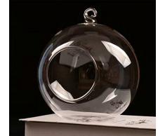 Kentop crasas Plantas Bola Decorativa Mini Colgante Cristal Transparente Jarrón de Cristal para Planta Flores Decoración