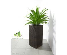 Maceteros para plantas de polyrattan marca Gartenfreude incluye insertos plásticos y sistema de riego para el interior y el exterior, marrón bicolor, 28 x 28 x 60 cm