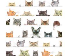 Caspari Inc. - Papel de regalo, diseño de gatos