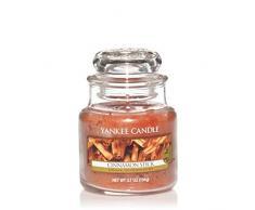 Yankee Candle 1055976E - Vela pequeña aromática en tarro a palito de canela, color beige