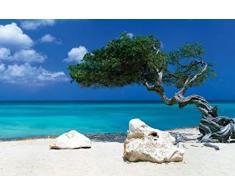 1art1 Playas - Divi Divi Tree, Tom Makie Póster (91 x 61cm)