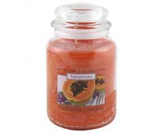 Caroline velas tropical Fusion de cristal para velas en tarro, Naranja