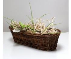 Cesta de mimbre canasta de Pascua cesta maceta de plantas cáscara pequeño marrón oval 35 cm