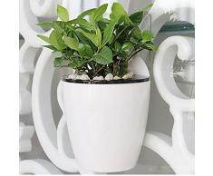 sungmor jardinería 3 piezas Creative para colgar maceta maceta con sistema de autorriego, diseño de, de plástico, de pared para plantas w/largo tiempo función de almacenamiento de agua