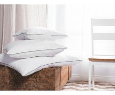 Almohada en algodón Japara 80x80 cm DIRAN
