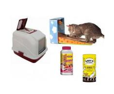 Pack Mi Primer Gato En Casa