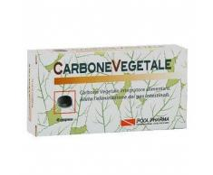 POOL PHARMA Srl Suplemento piscina Pharma Alimentos de carbon 40 Tablets
