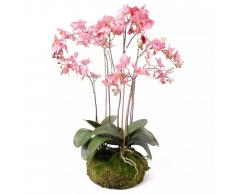Emerald Orquídea artificial con musgo rosa 75 cm 417662