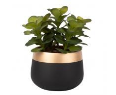Planta suculenta artificial en maceta de cerámica negra y dorada