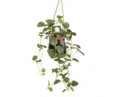 Planta verde artificial con macetero colgante de cristal