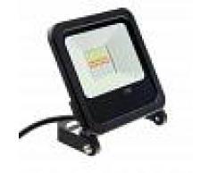 Barcelona LED Foco proyector LED RGB 30W IP65 con mando 24 teclas y estaca